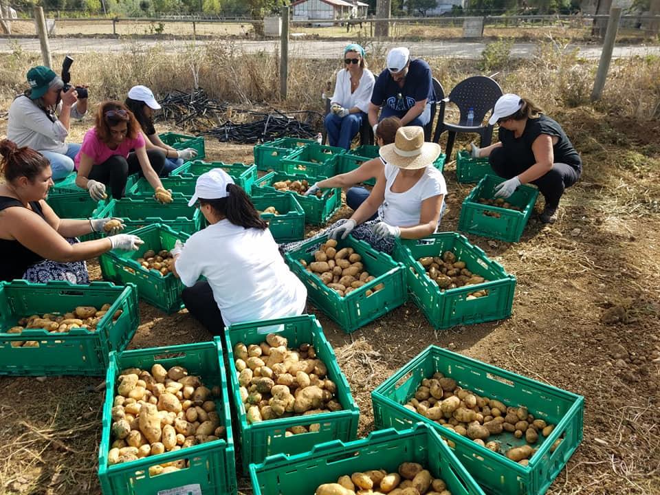 Lisbonne-agriculture solidaire 10.jpg