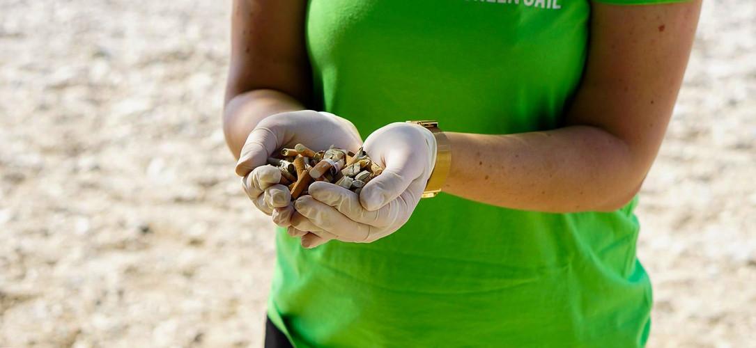 Conservation Marine Split 2.jpg