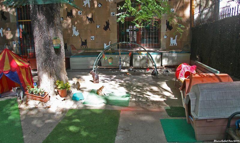 Génération Monde - Volontariat - Barcelo