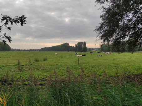 Etappe06 Kleit-Damme