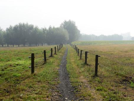 Etappe03 GR5A Sint-Laureins-Assenede