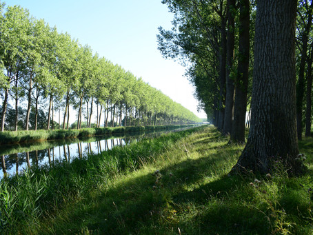 Etappe02 GR5A Hoeke-Sint-Laureins