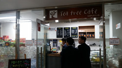 Tea tree cafe