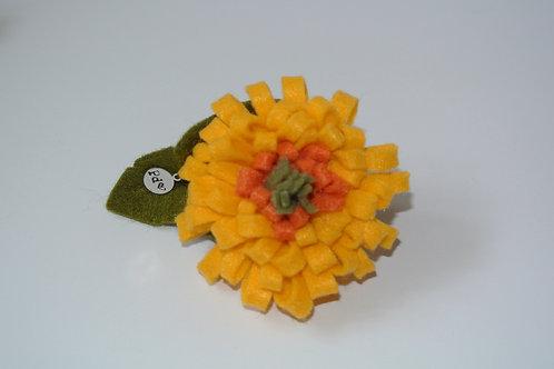 Yellow and Orange Zinnia