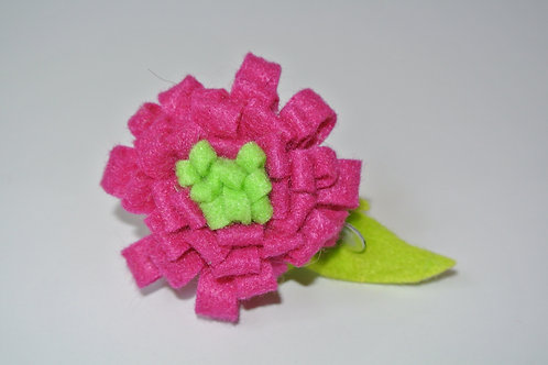 Pink and Lime Zinnia