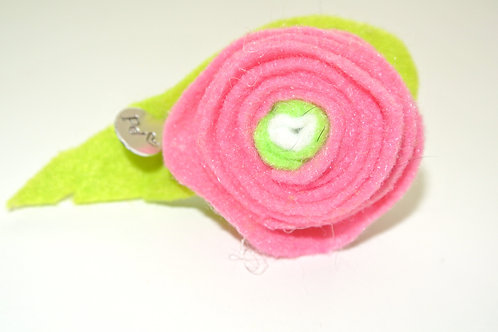 Pink and Lime Ranuculus