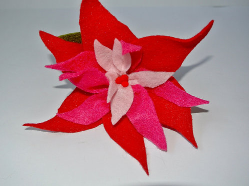Triple Pink Poinsettia