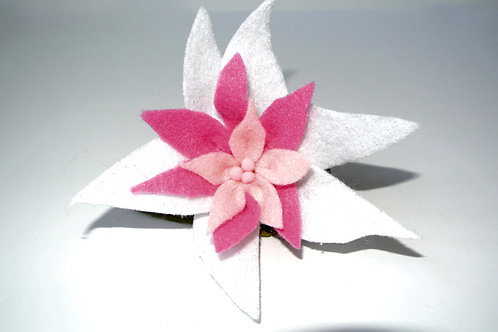 White and Pink Poinsettia