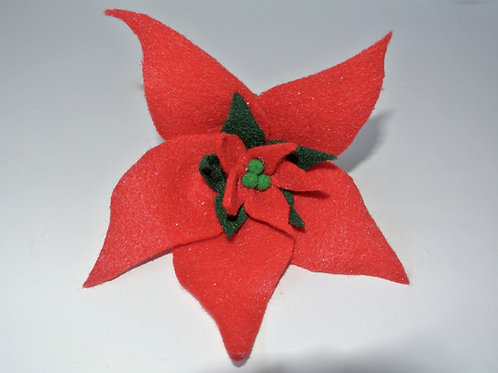 Red and Black Poinsettia