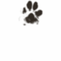 5-54088_dog-paw-paw-print-paw-prints-dog