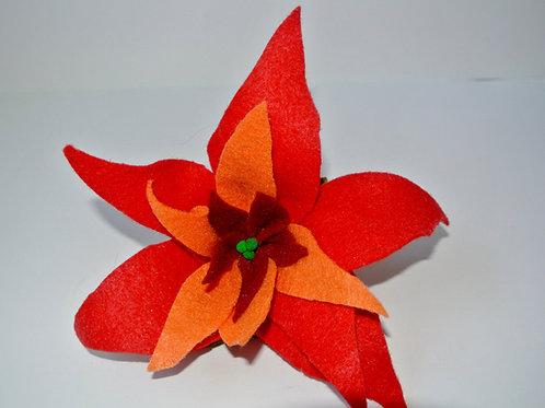 Orange and Red Poinsettia