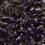 Thumbnail: Tight Curl
