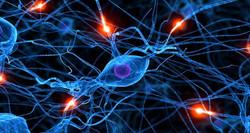neurone-synapse-cerveau-maladies-communication-750x400