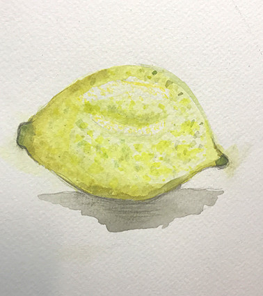 Lemon by 10 year old student