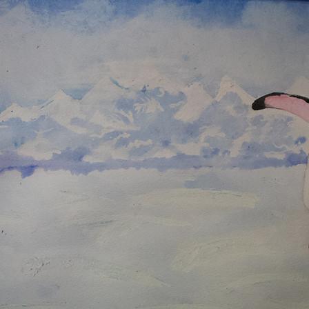 penguin-detail.jpg