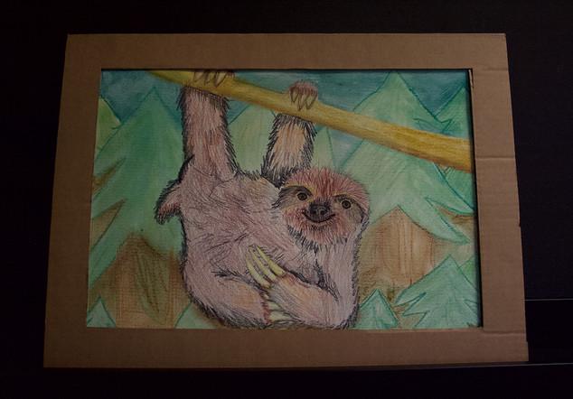 sloth-camille.jpg