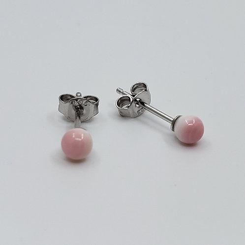 4mm Conch Shell Earrings