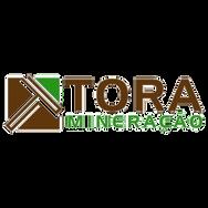 TORA MINERAÇÃO.png