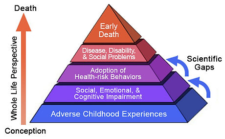 ACEs Study: Adverse Childhood Experiences
