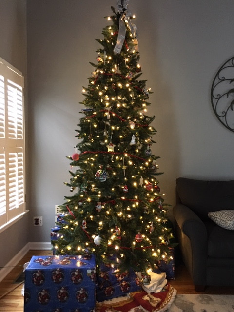 decorated Christmas tree with white lights