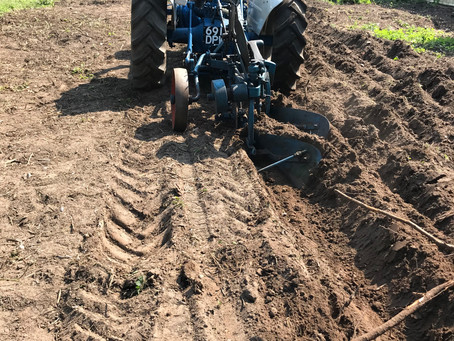 One Man and His Plough