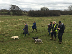 Palgrave Dog Walk