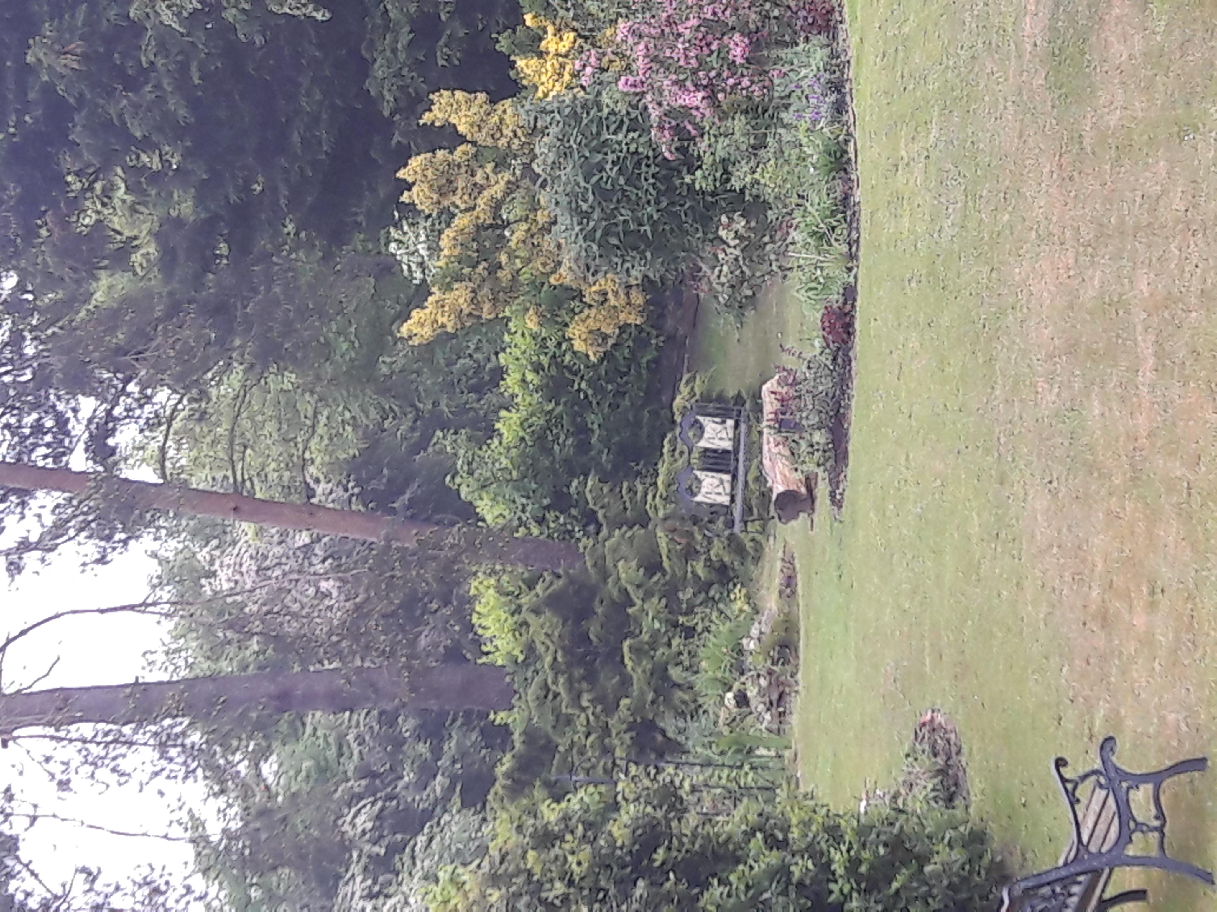 Palgrave Open Gardens