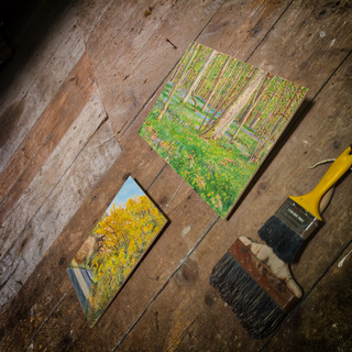 shed paintings.jpeg