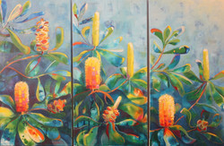 Banksia Triptych