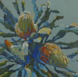 (31)Katefloydart-2017-Banksia on Board