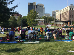 Yoga in the Lawn