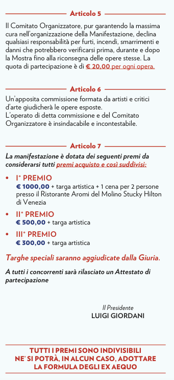 NARDI2015 brochure PITTURA REGOLAMENTO2.