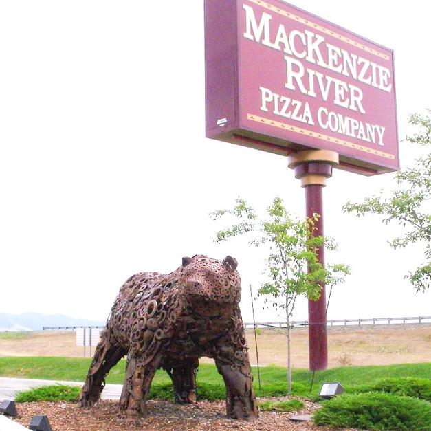 Bear Missoula, MT