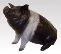 PIG Saddle Back
