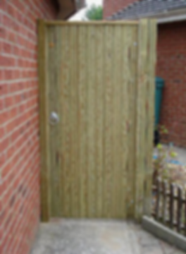 Single Tounge And Groove Gate - Pinewood Fencing