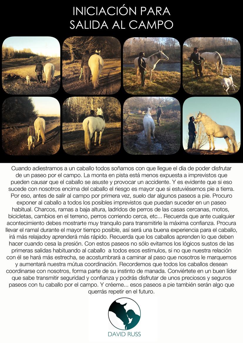 INICACIÓN_SALIDA_AL_CAMPO_DAVID_RUSS.jpg