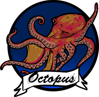 Val's Ocean Pacific Seafood Distribution High Quality Octopus