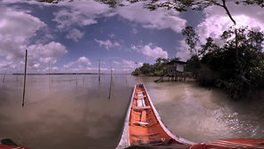 o_rio_imersao_floresta_amazonica.jpg