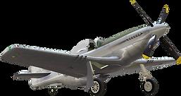P-51 snapshot_001.png