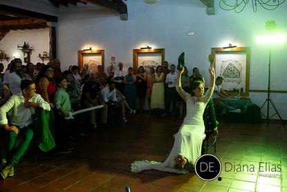 Carolina e Vitor_01395.jpg