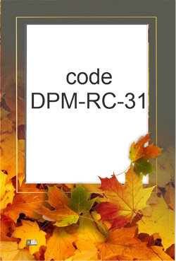 DPM-RC-31