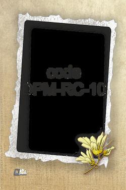 DPM-RC-10