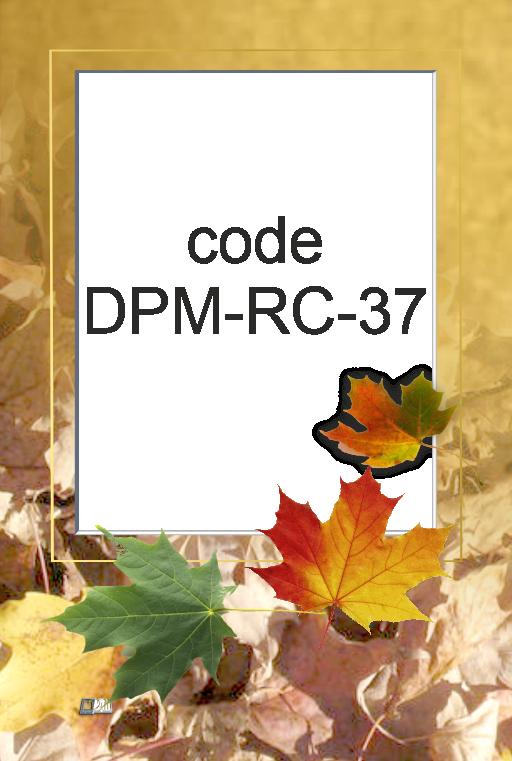 DPM-RC-37