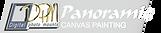 PANORAMIC-1.png