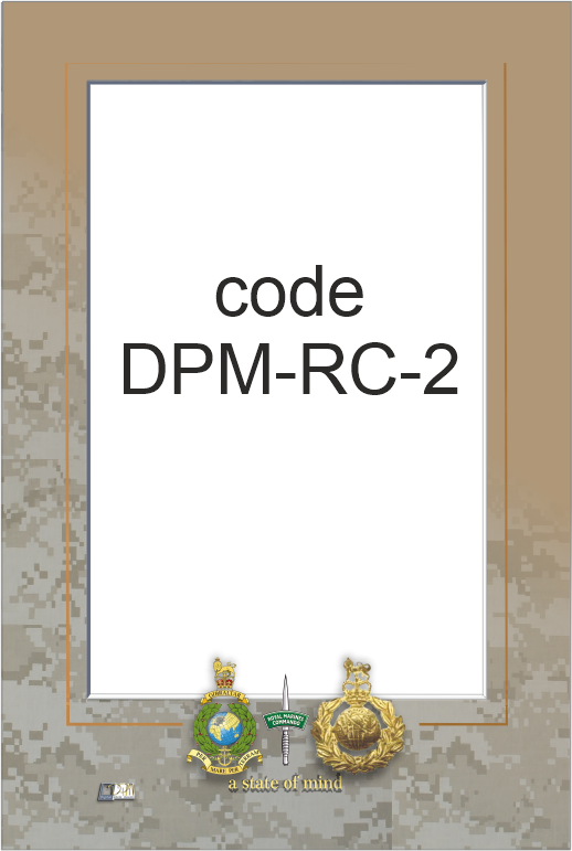 DPM-RC-2