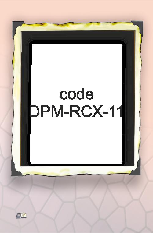 RCX-11