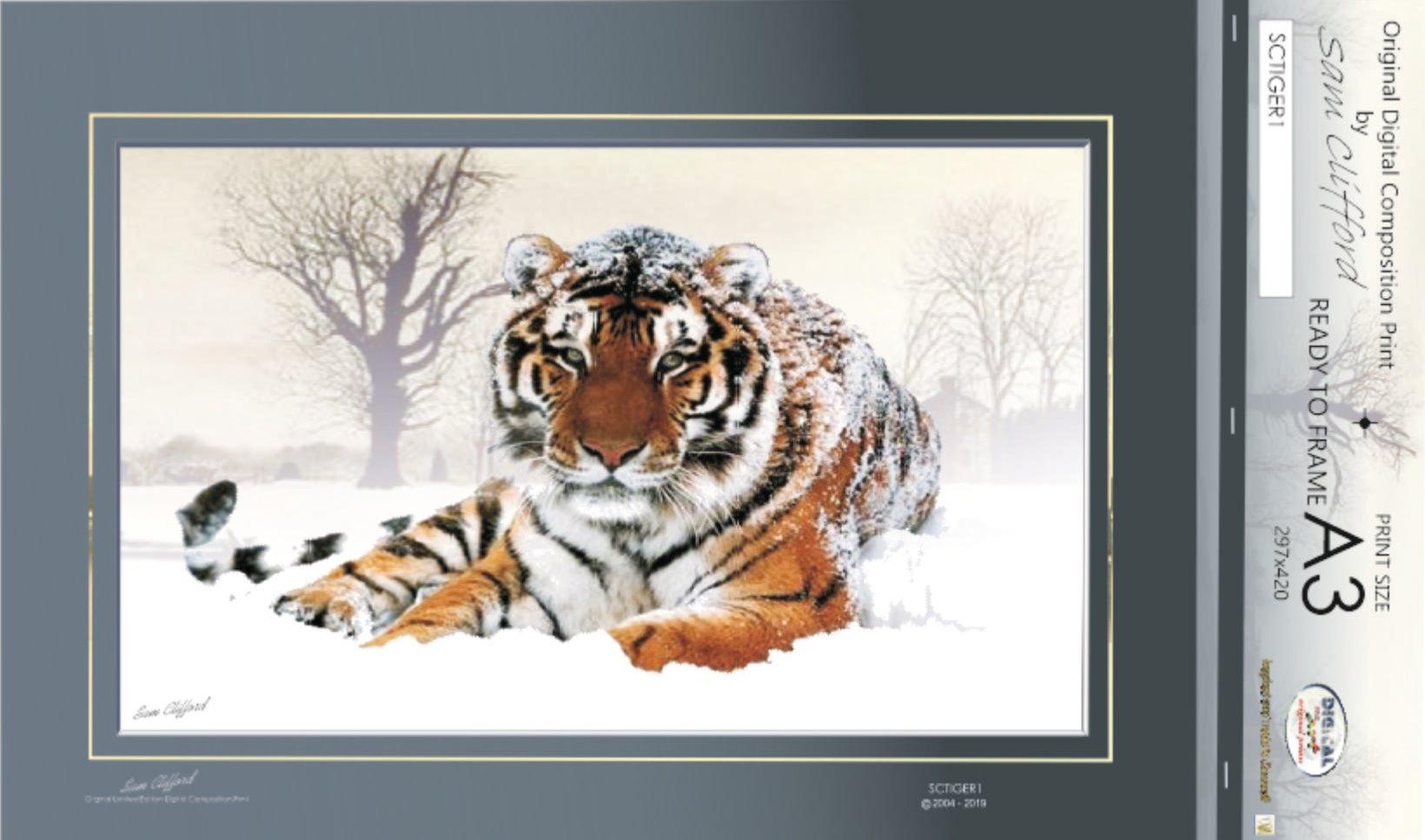 print code: tiger-02