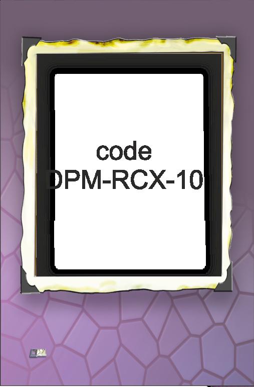 RCX-10