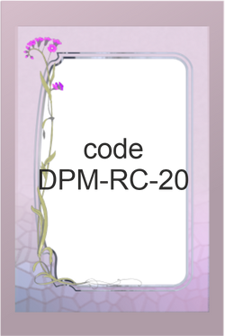 DPM-RC-20