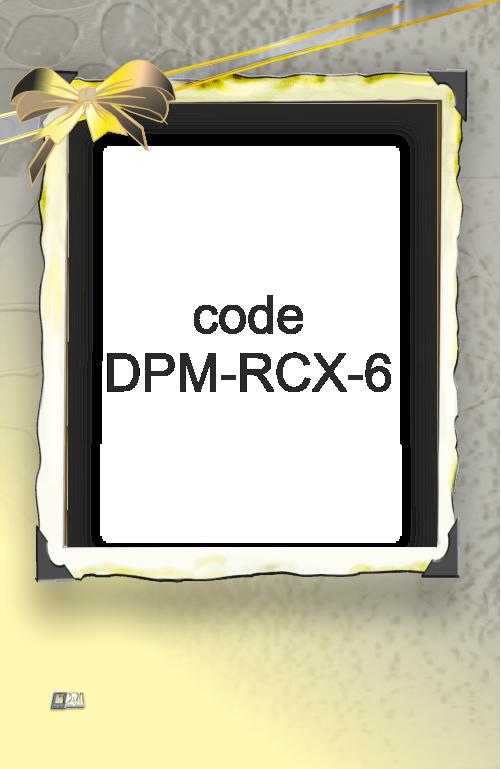 RCX-6